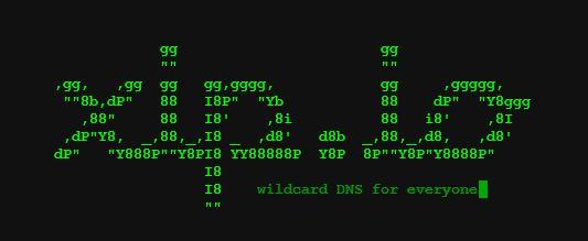 xip.io DNS ontwikkeltool