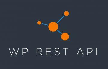 WordPress REST Api Logo